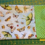 First project from shop hop done: a bug pillowcase